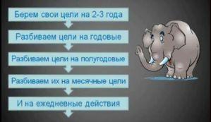 Слоны и тайм-менеджмент